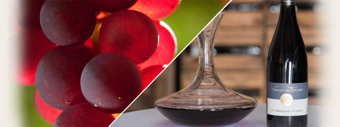 Rotweine & Spezialitäten